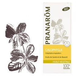 Calophylle : huile végétale pour soulager les jambes