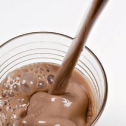 Axobrik Chocolat,riche en protéines,sans gluten,idéal pour le sportif