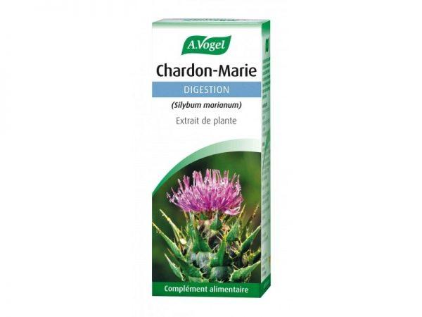 Chardon marie : extrait plante fraîche pour faciliter la digestion et aider le foie